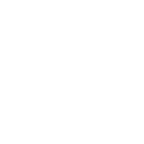 Video Blogs