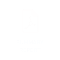 Summary Report 2019